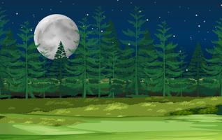 Een nachtelijk boslandschap