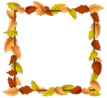 An autumn leaf border vector
