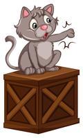 Een kat op houten kist