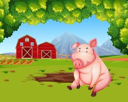Pig at the farmland landscape