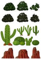 Diferentes tipos de árvores e montanhas