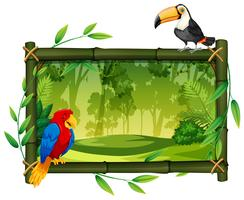 Birds on jungle picture frame vector