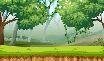 green woods landscape background