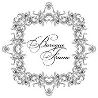 Vector ornamental frame. Baroque pattern.