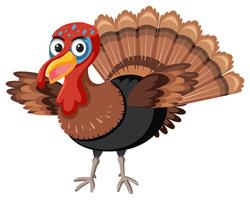 Thanks giving turkey white background vector