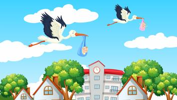 Birds delivering babies in the neighbor vector