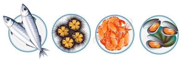 Different types of seafood