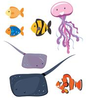 Set of different sea animals