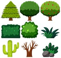 Set of green plant vector