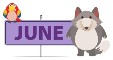 Gray fox and sign template for June vector