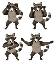 A raccoon with shmoney dance