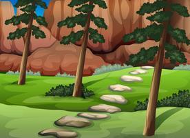 Une forêt avec de gros rochers