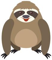 Cute sloth with round body