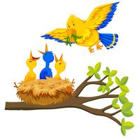Bird feeding baby bird vector