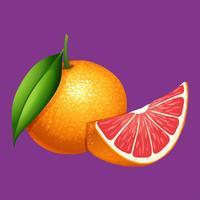 Eine Organice-Pampelmuse auf purpurrotem Hintergrund