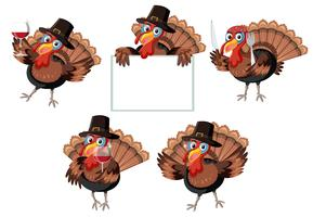 Turkey character on white background vector
