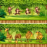 Set van wilde dieren landschap