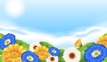 Un jardín de flores en la naturaleza