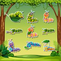 Set of caterpillar sticker on forest background