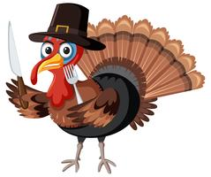 Thanksgiving turkey character on white background vector