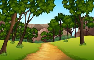 Forest pathway landscape scene vector
