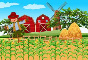 Farm scene with crops and scarecrow