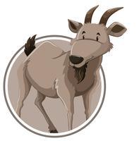 Una plantilla de etiqueta de cabra
