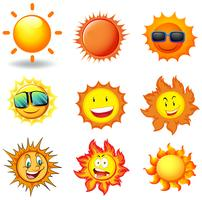 Un conjunto de vectores de sol