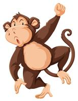 A monkey character on white background