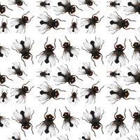 Seamless pattern of flys