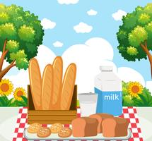 Picnic meal in park