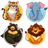 Wild animals on circle template
