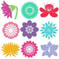 Nine floral templates