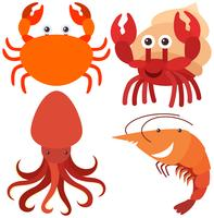 Four types of sea animals