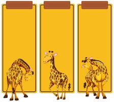 Different post of giraffe on banner