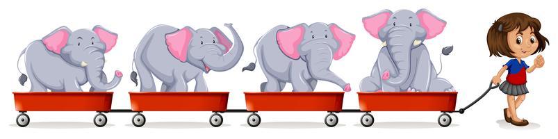Menina puxando carros carregados com elefante