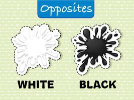Opposite words for white and black