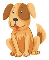 Little dog with brown fur vector