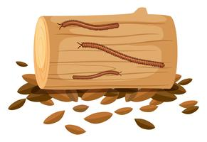 Centipede On Wood on White Background vector