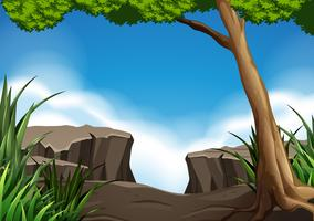 A nature cliff background