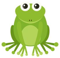 Green frog sitting on white background