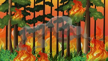 A wildfire disaster background vector