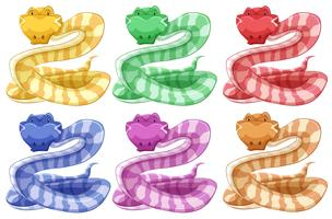 Different colors of snake vector