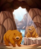 Two happy bears in a cave