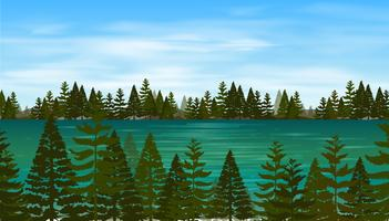 Escena de fondo con bosque de pinos junto al lago