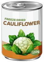 A Can of Freeze-Dried Cauliflower