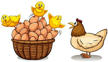 Chicken and eggs in basket
