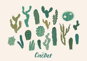 Ensemble de collection de cactus. Illustration vectorielle Élément de design