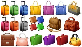 Different types of luggages vector