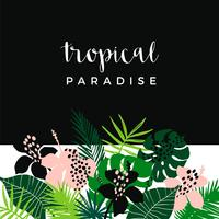 Summer tropical design. Vector template. Design element.